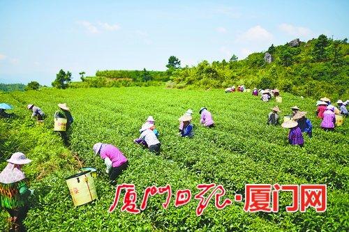 http://www.k2summit.cn/junshijunmi/938559.html