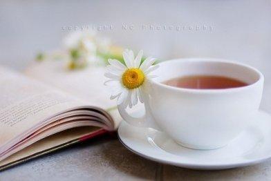 茶與智慧,茶與欲望