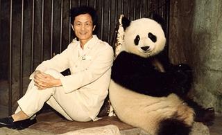 """回顧熊貓歲月六:""""熊貓爸爸""""這些年"""