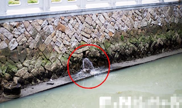 污染回潮福州新西河再蒙羞 沿岸又有污水向內河排放
