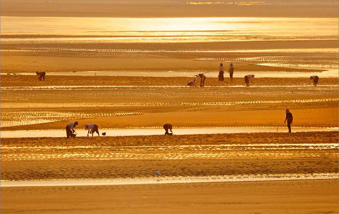 秀丽沙滩青山湾
