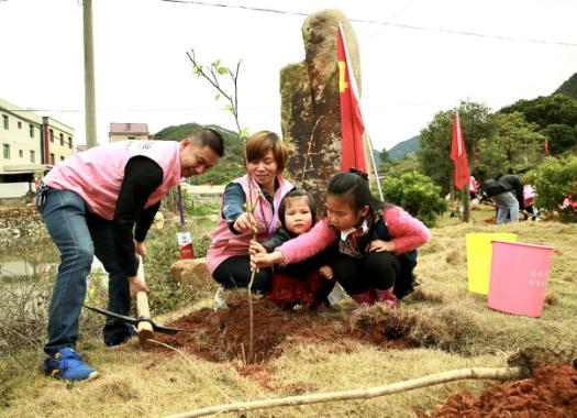 助力泉州森林城市创建 泉州微公益协会开展主题植树活动