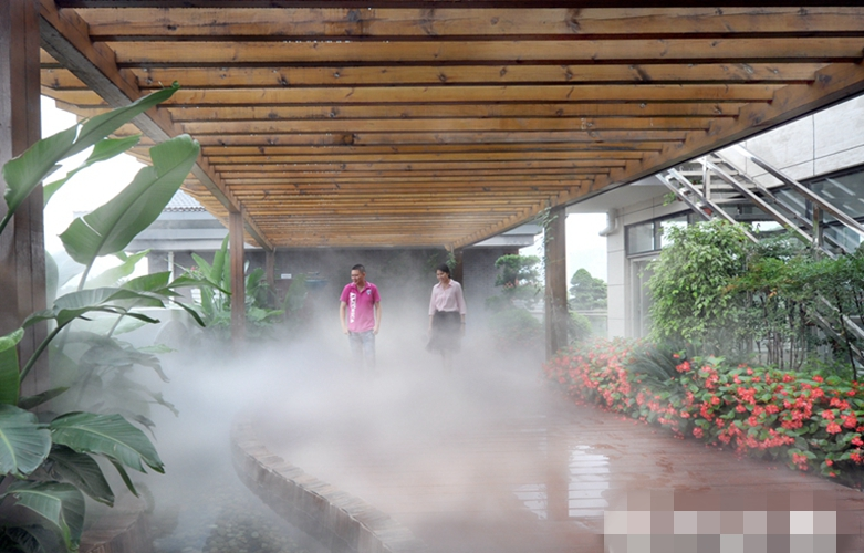"""福州大力綠化屋頂 9月前再建成多個""""空中花園"""""""