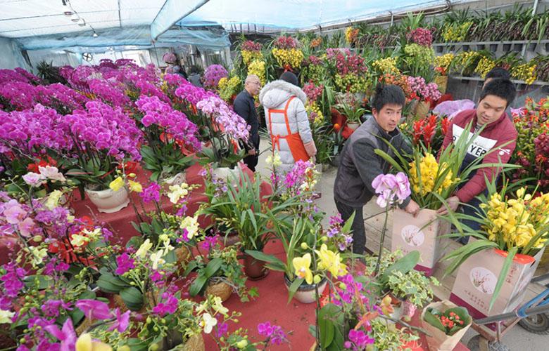 福州:三大花市年味濃