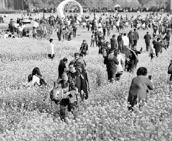游客数量、旅游收入创历史新高 福州新春旅游为何这么火?