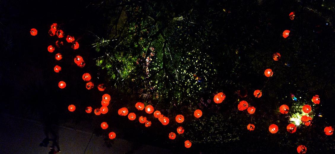 漳州:千灯夺目元宵节 正是游园赏灯时
