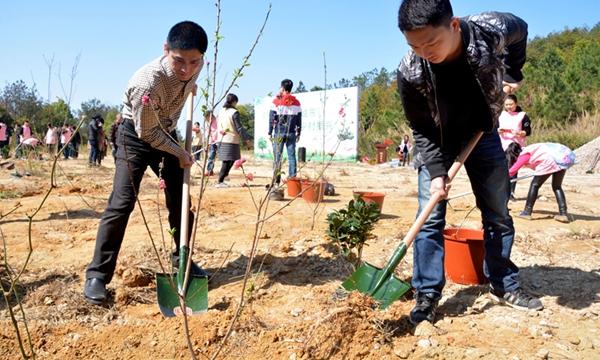 泉州:公益植樹添新綠
