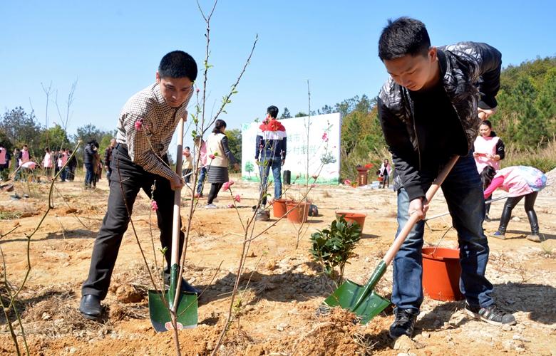 泉州:公益植树添新绿