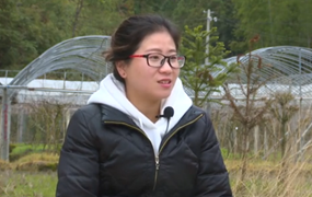 返鄉女大學生的農業夢