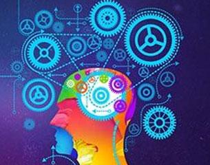 厦门大学召开第二届本科生创新创业年会