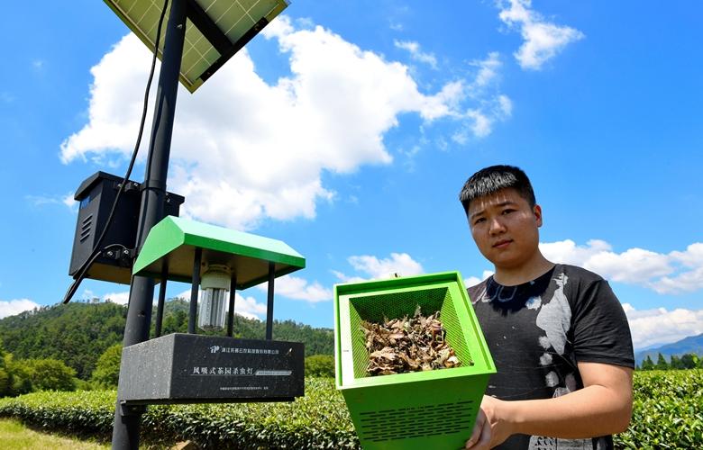 武夷山推广绿色防治茶园病虫害技术