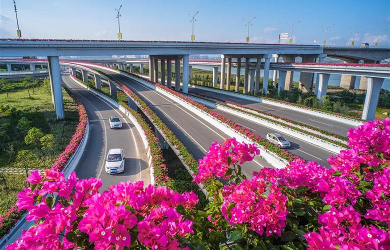 福建泉州:花开立交桥