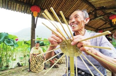 三明:深化林业改革促进乡村振兴 让更多百姓受益