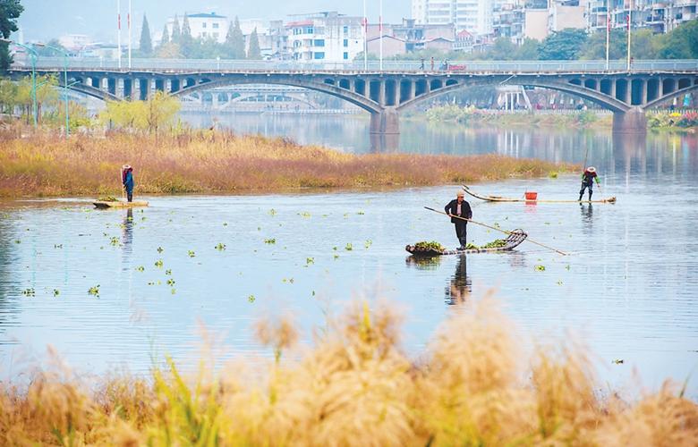 浦城打造生態水美走廊