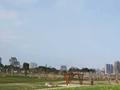福清湿地公园A段春节前完工