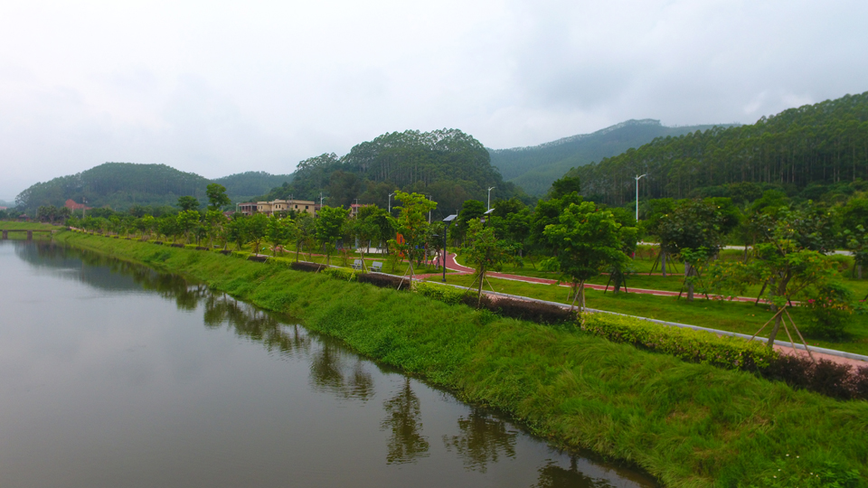 九九坑溪龍海市雙第華僑農場段(資料圖)