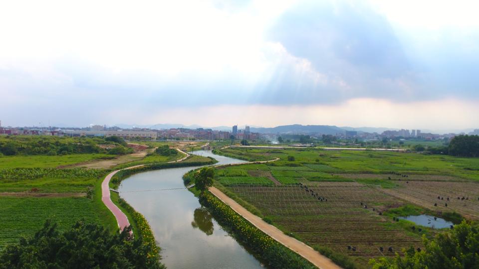 晉江市內坑九十九溪(資料圖)