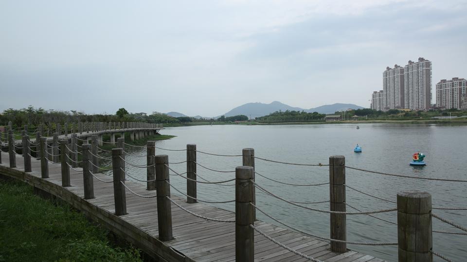 莆田土海湿地公园(资料图)