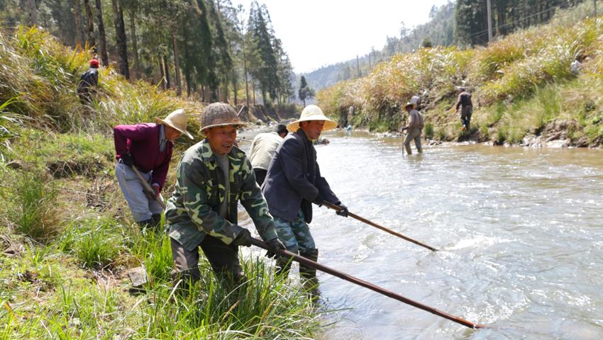 福安社区护河清洁队清理河道(资料图)