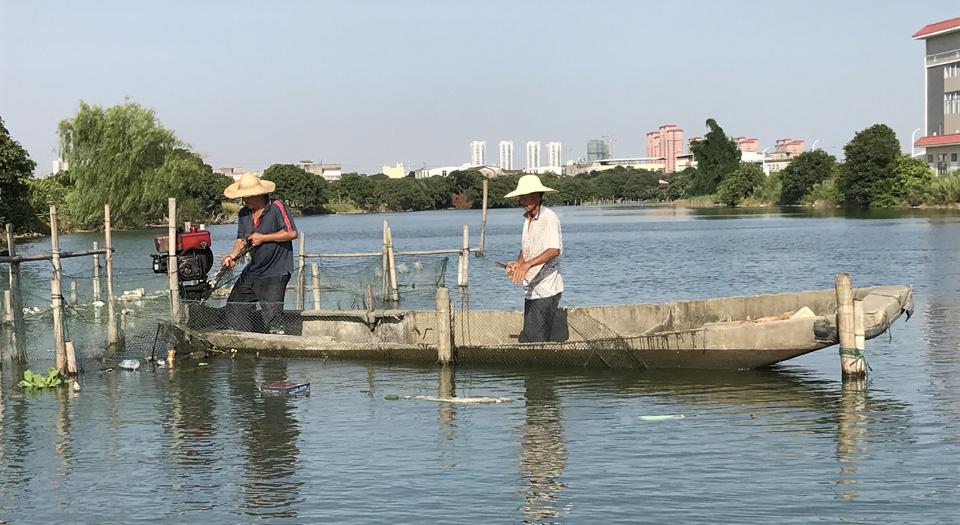 工作人員在延壽溪涵江段清理漁網(資料圖)