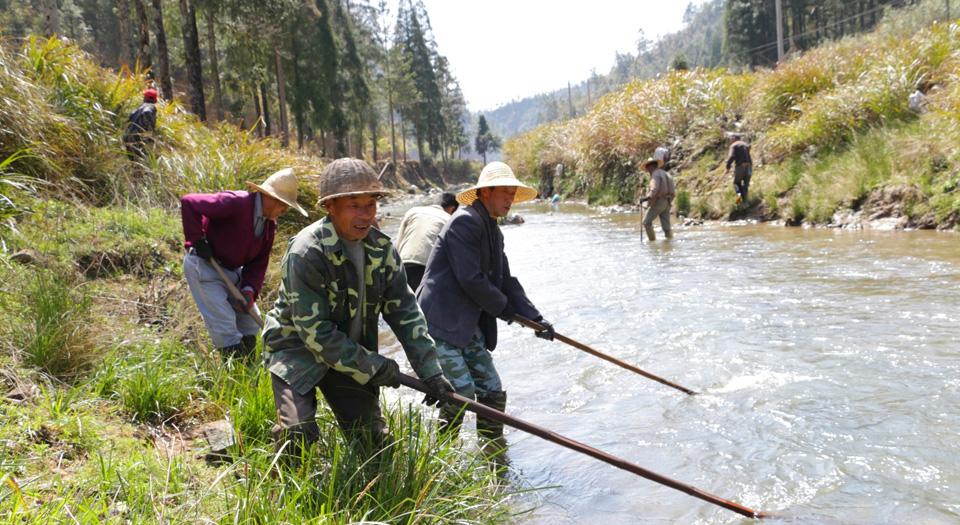 福安社區護河清潔隊清理河道(資料圖)