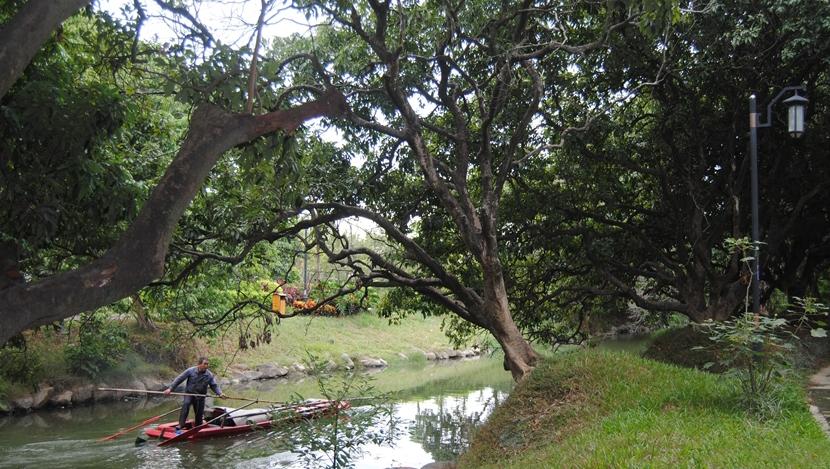 河道保潔員對荔城的河道進行維護(資料圖)