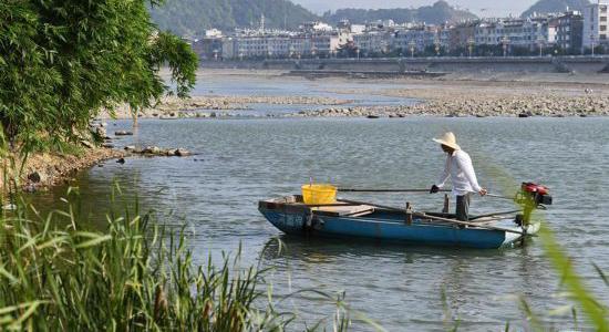 河道保潔員在桐山溪上清理漂浮物(資料圖)