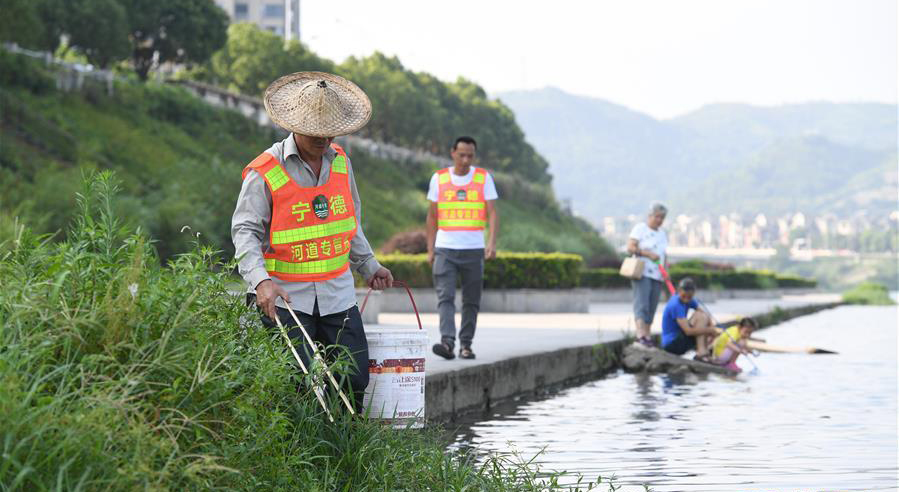 河道專管員在福鼎市桐山溪河段巡查時撿拾垃圾(資料圖)