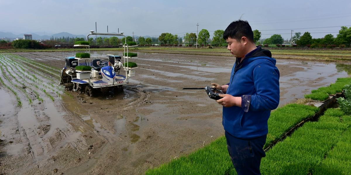 智能無人駕駛插秧機助力農事