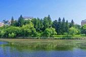 福建石獅:打造綠色生態城市 不斷刷新城市顏值