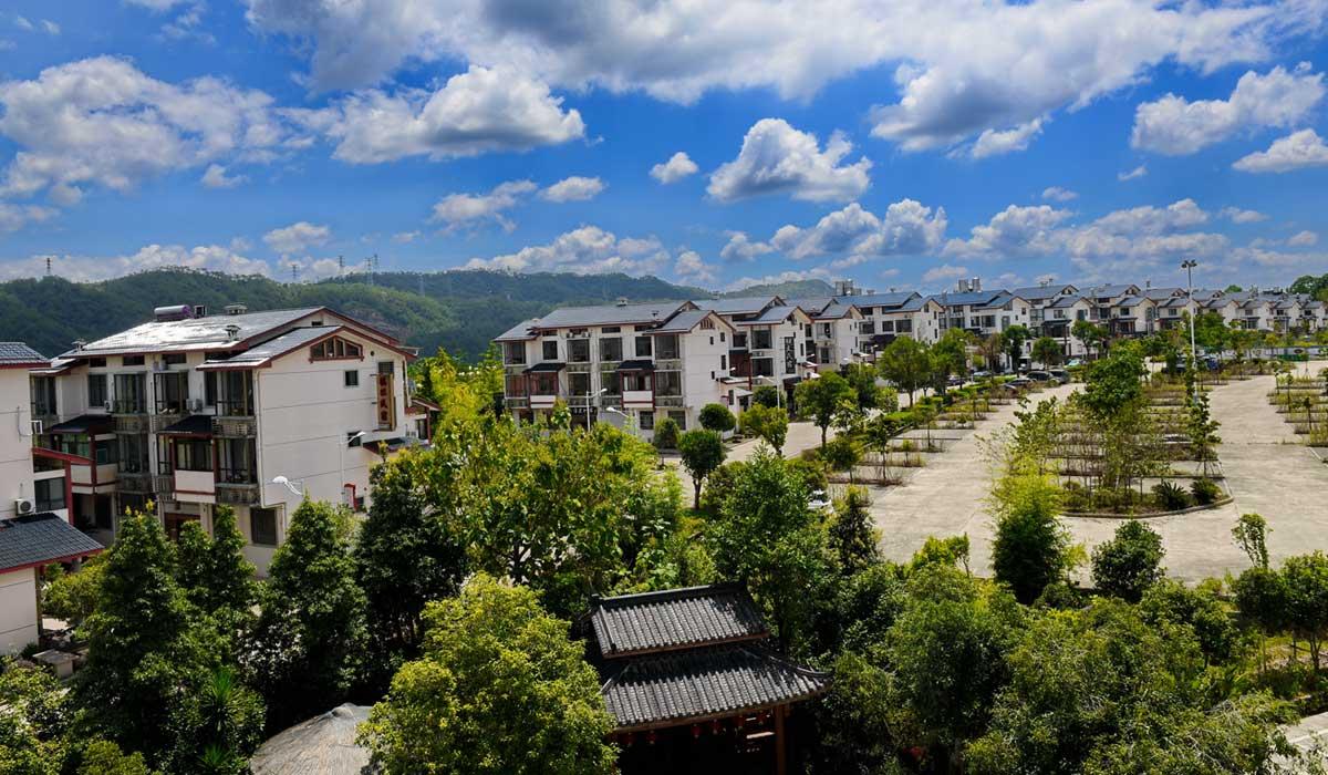 福建武夷山:發展特色産業 助推鄉村振興