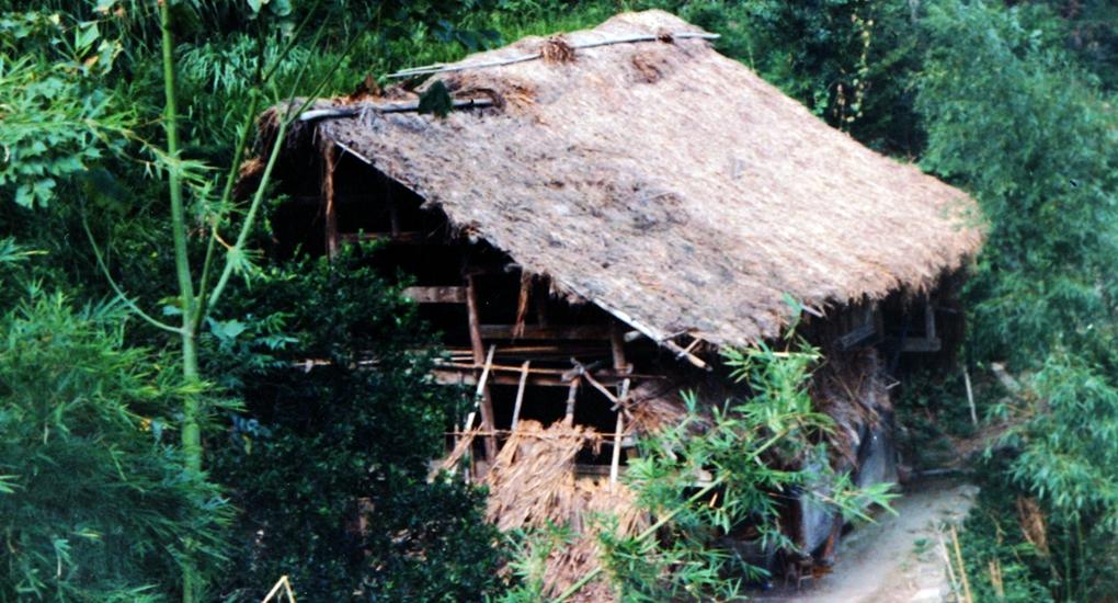 曾經,福鼎市赤溪村村民住在茅草屋裏。