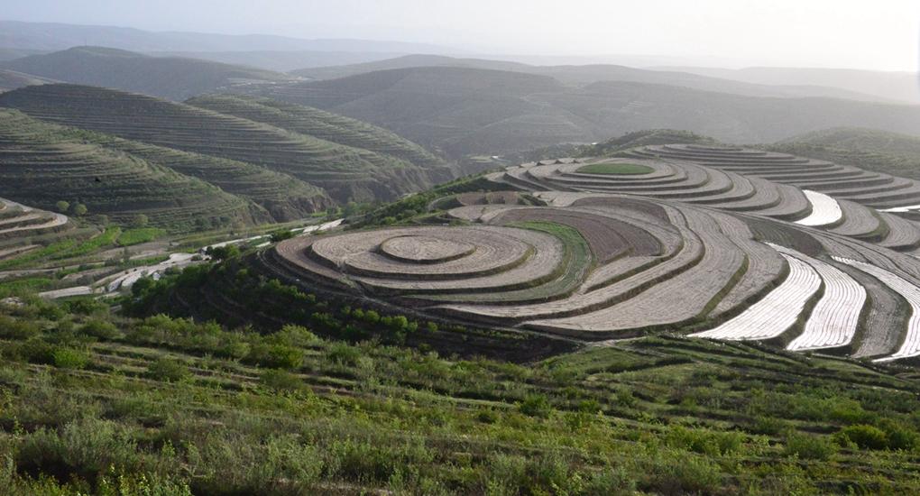 福建省幫助寧夏回族自治區固原市彭陽縣建設生態扶貧工程。