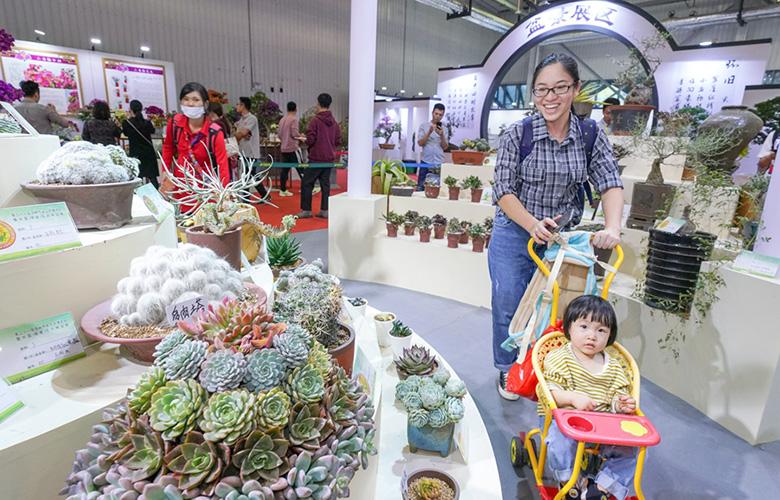 福建漳州:偶會不須張錦幕 遊人已在百花中