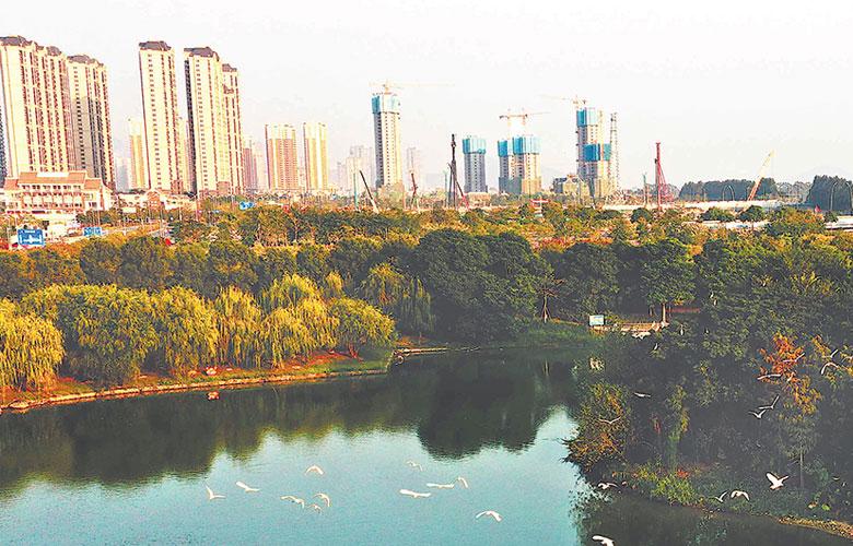 漳州市龍文區:生態園裏風光美