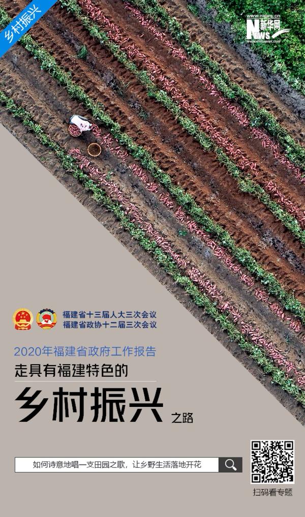 """【2020年福建省政府工作報告關鍵詞】""""走具有福建特色的鄉村振興之路"""""""