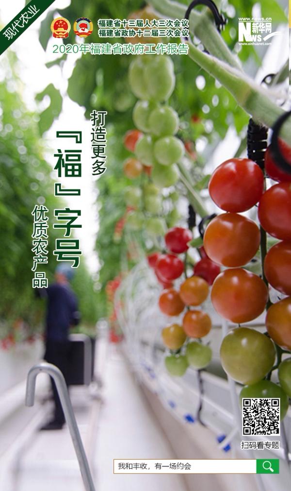 """【2020年福建省政府工作報告關鍵詞】""""打造更多'福'字號優質農産品"""""""
