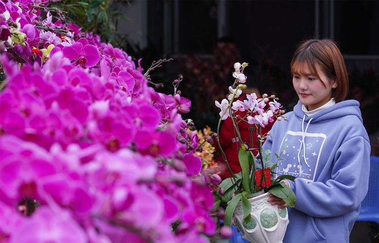 【新春走基層】福建:花市春意濃
