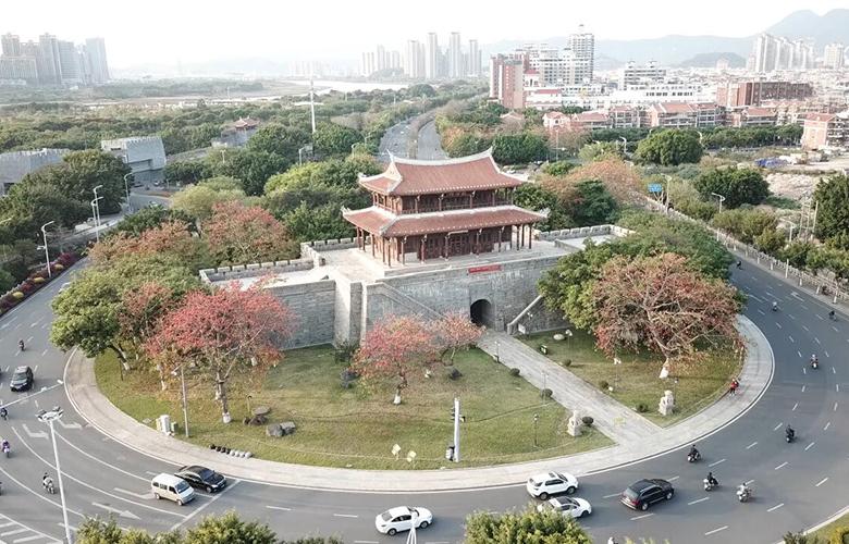 """【""""飛閱""""中國】福建泉州:木棉花開俏爭春"""