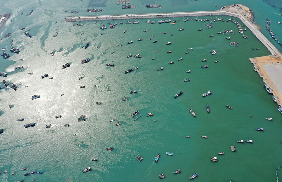 福建漳浦:復漁復産漁港忙