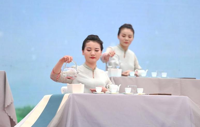 福鼎舉辦第九屆白茶開茶節