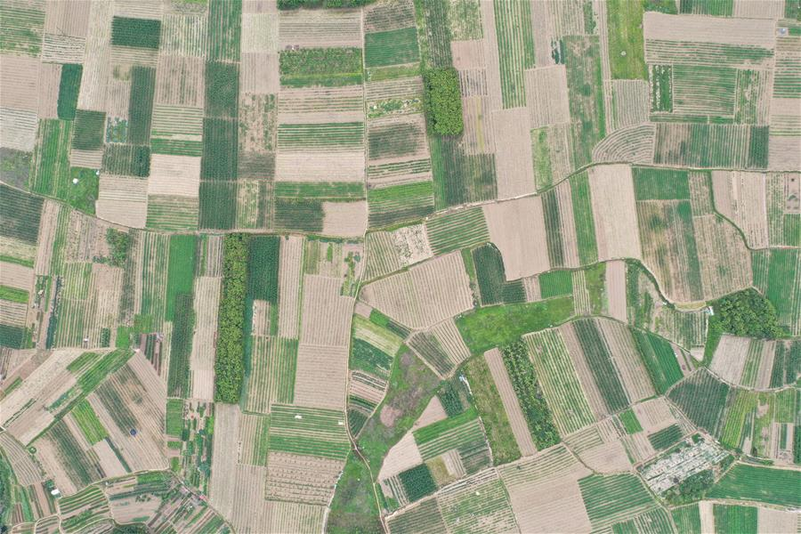 福建南安:生産穩步推進