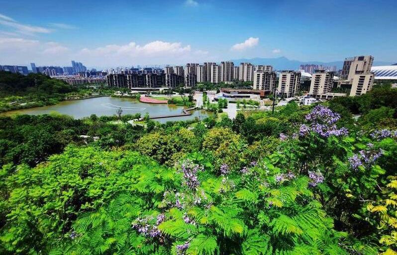 福州:公園越來越多 城市越來越綠