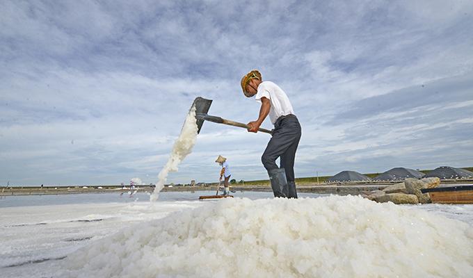 福建泉州:防禦臺風 搶收原鹽