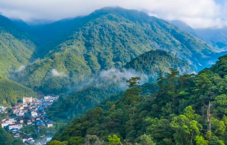【視頻】走進武夷山國家公園