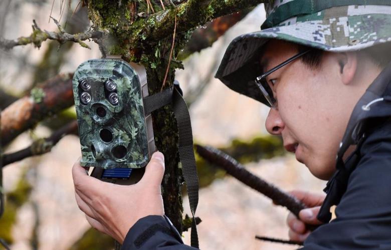 """""""關注森林·探秘武夷""""主題科考在武夷山國家公園舉行"""