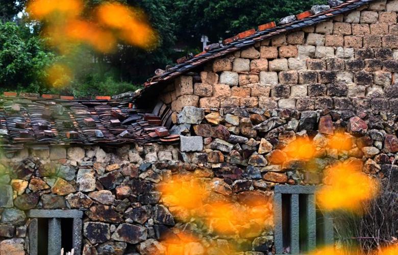 福建:五彩斑斕的樟腳村