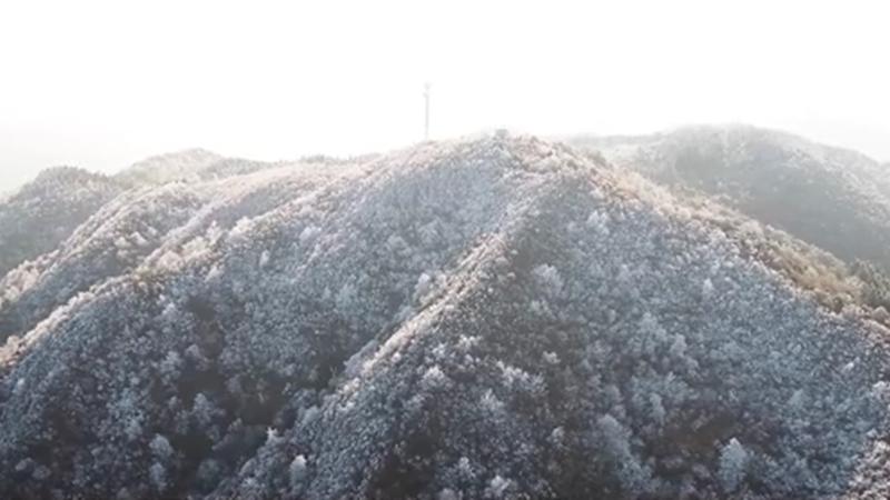 福建寧化:霧凇美景 分外妖嬈