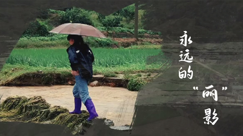 """""""時代楷模""""孫麗美"""